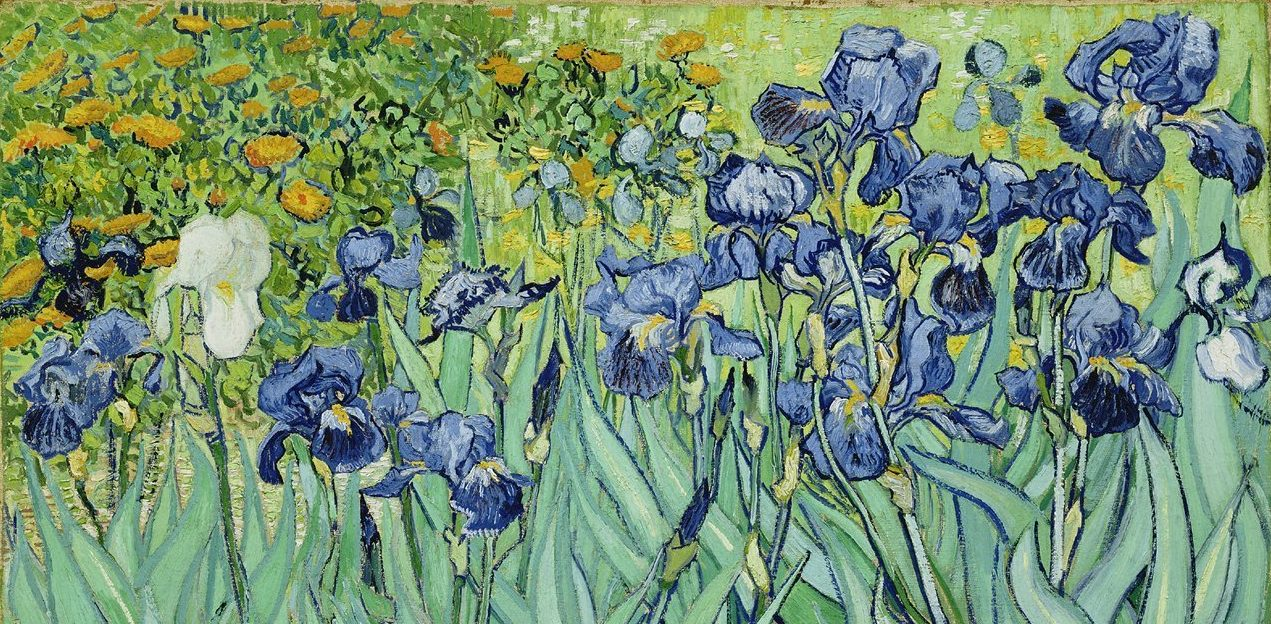 vincent van gogh irises | online writing course