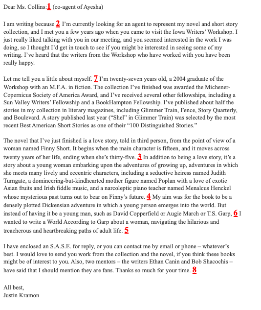 literary agent query letter example
