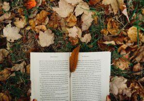 NaNoWriMo tips for national novel writing month